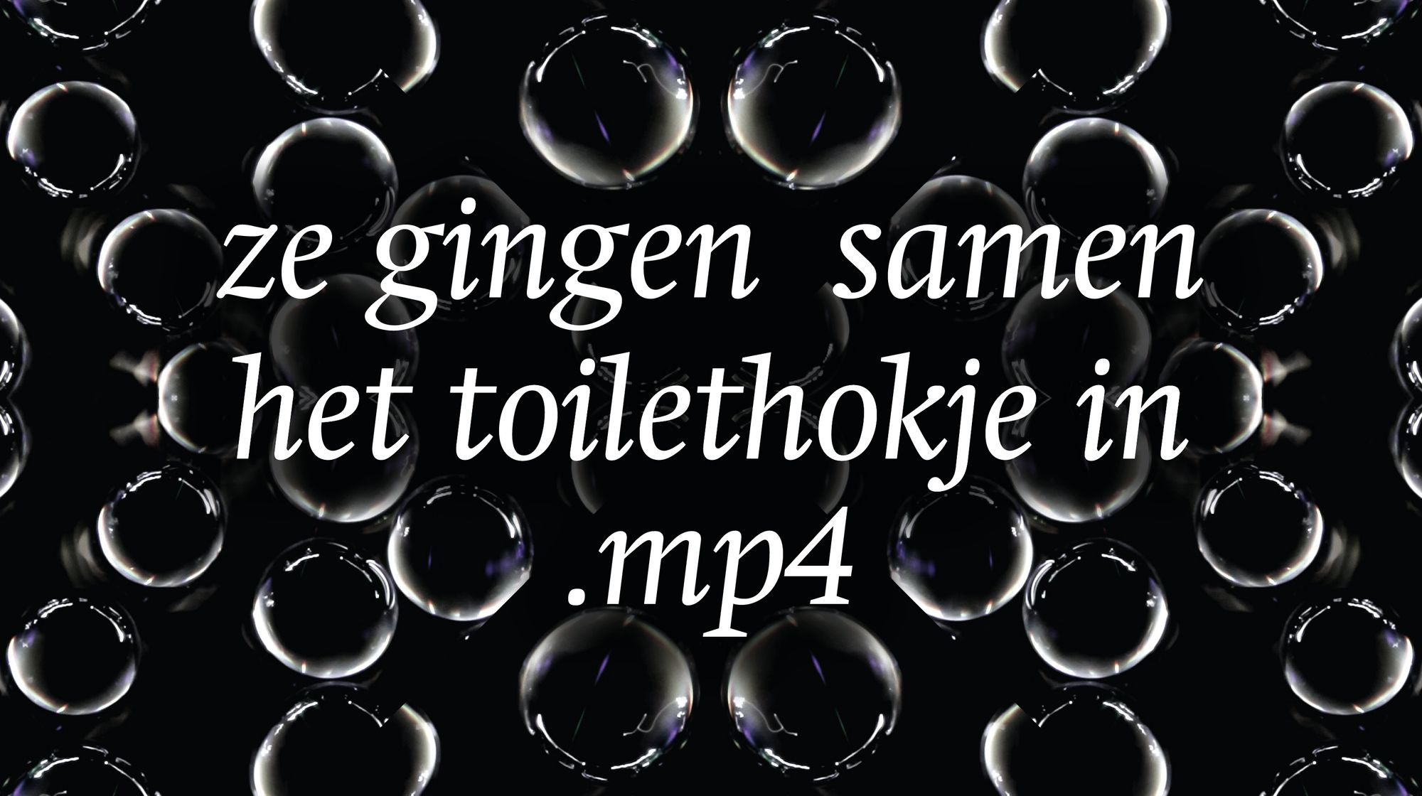 Ze gingen samen het toilethokje in.mp4